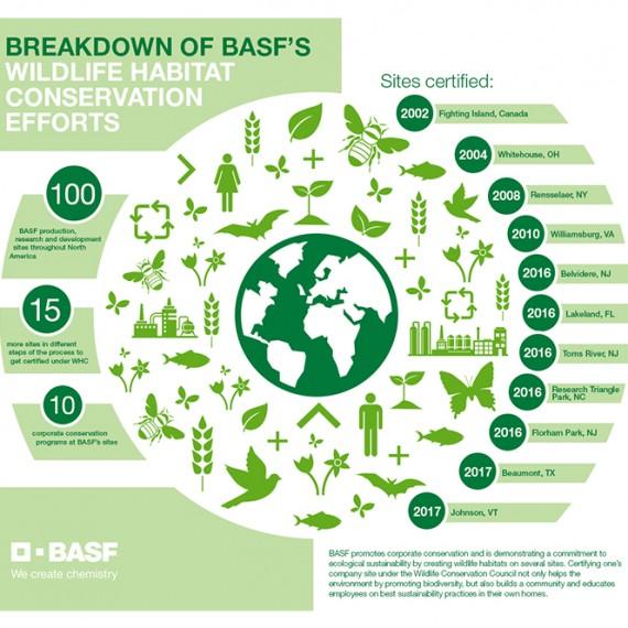 infographic_BASF_WHC
